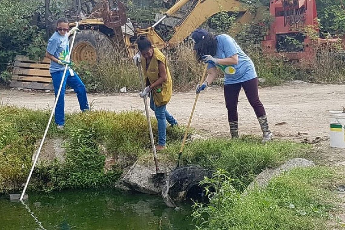 Tzu Chi, AUC students  clean Pond Island area
