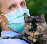 French cat survives coronavirus infection